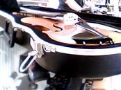 KNILLING STRING INSTRUMENTS Violin SINFONIA